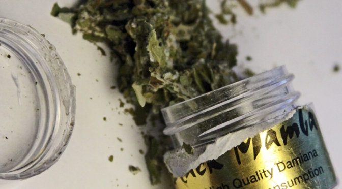 Synthetic Pot Tied to Surge of Emergency Cases